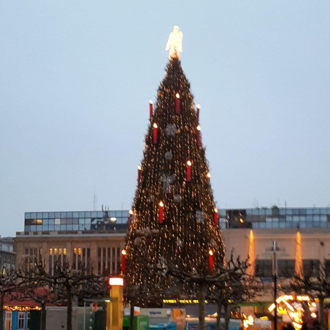 Weihnachtsbaum in Dortmund