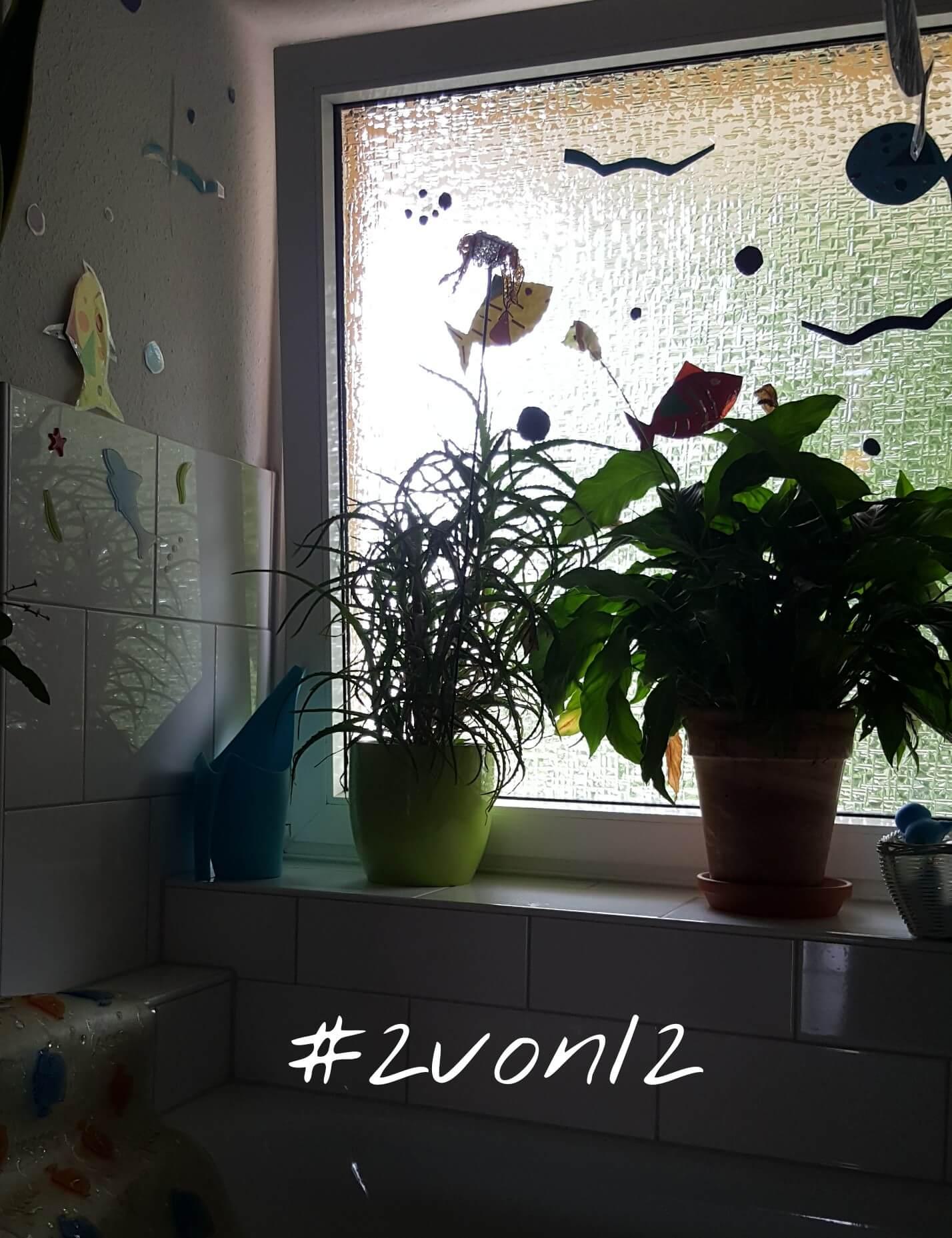 2von12