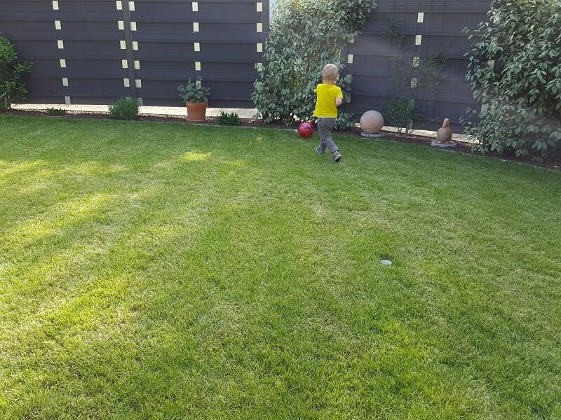 Mini-Fußballer