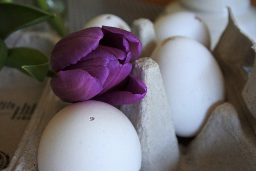 Eier auspusten für Ostern mit kleinen Kindern Blas-Fix