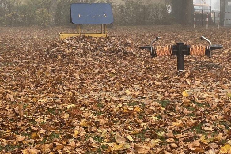 Spielplatz im November mit sehr viel Laub